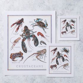 Cook's Illustrated Unframed Print: Crustaceans
