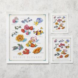 Cooks Illustrated Unframed Print: Edible Flowers