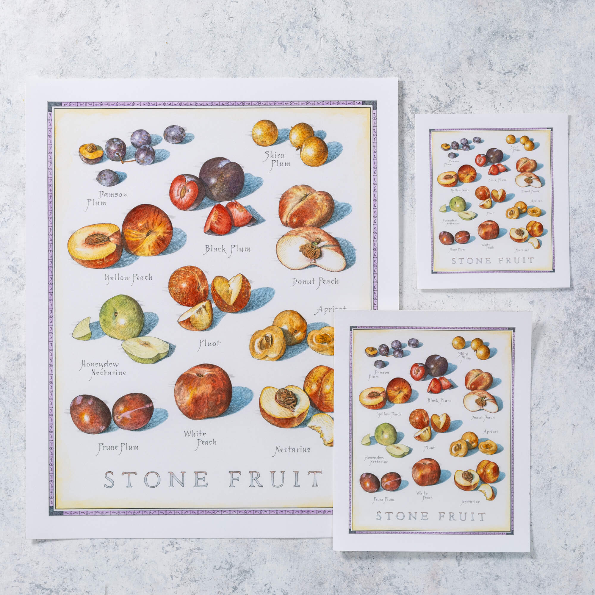 Cook's Illustrated Unframed Print: Stone Fruit