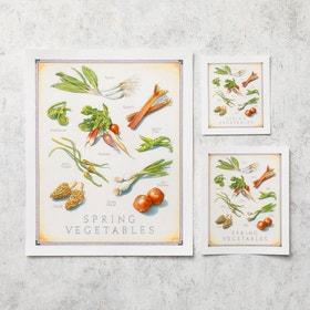 Cooks Illustrated Unframed Print: Spring Vegetables