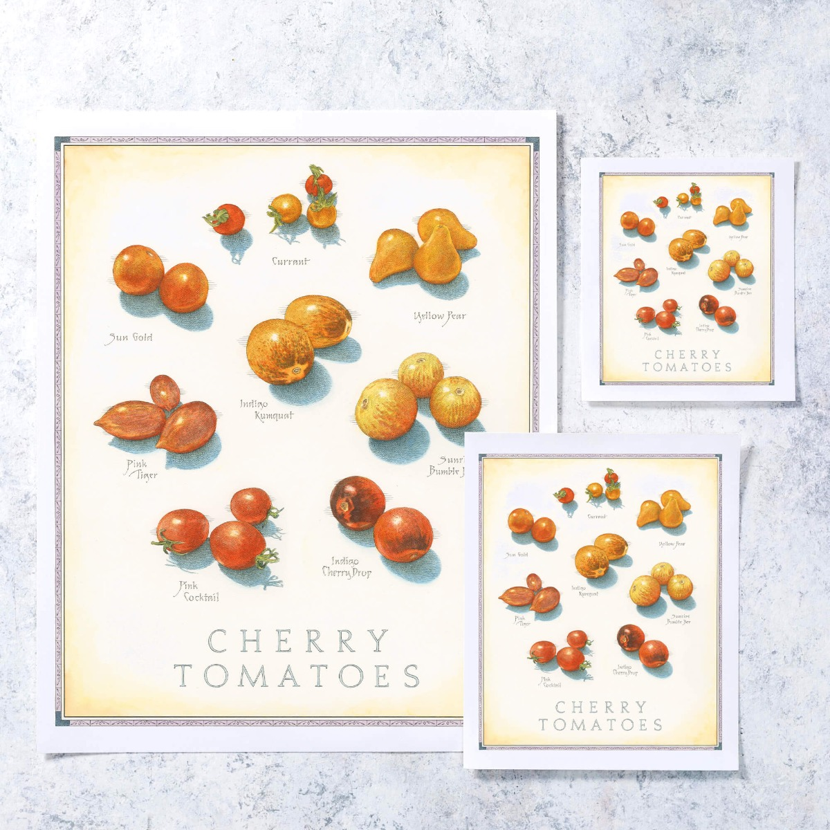 Cook's Illustrated Unframed Print: Cherry Tomatoes