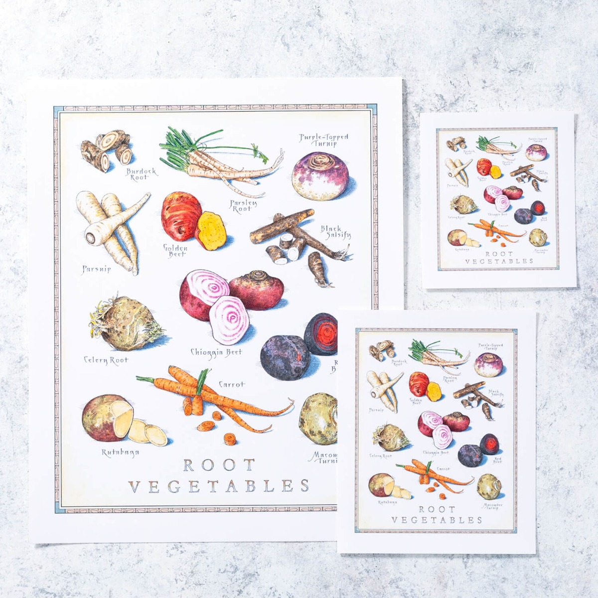 Cook's Illustrated Unframed Print: Root Vegetables