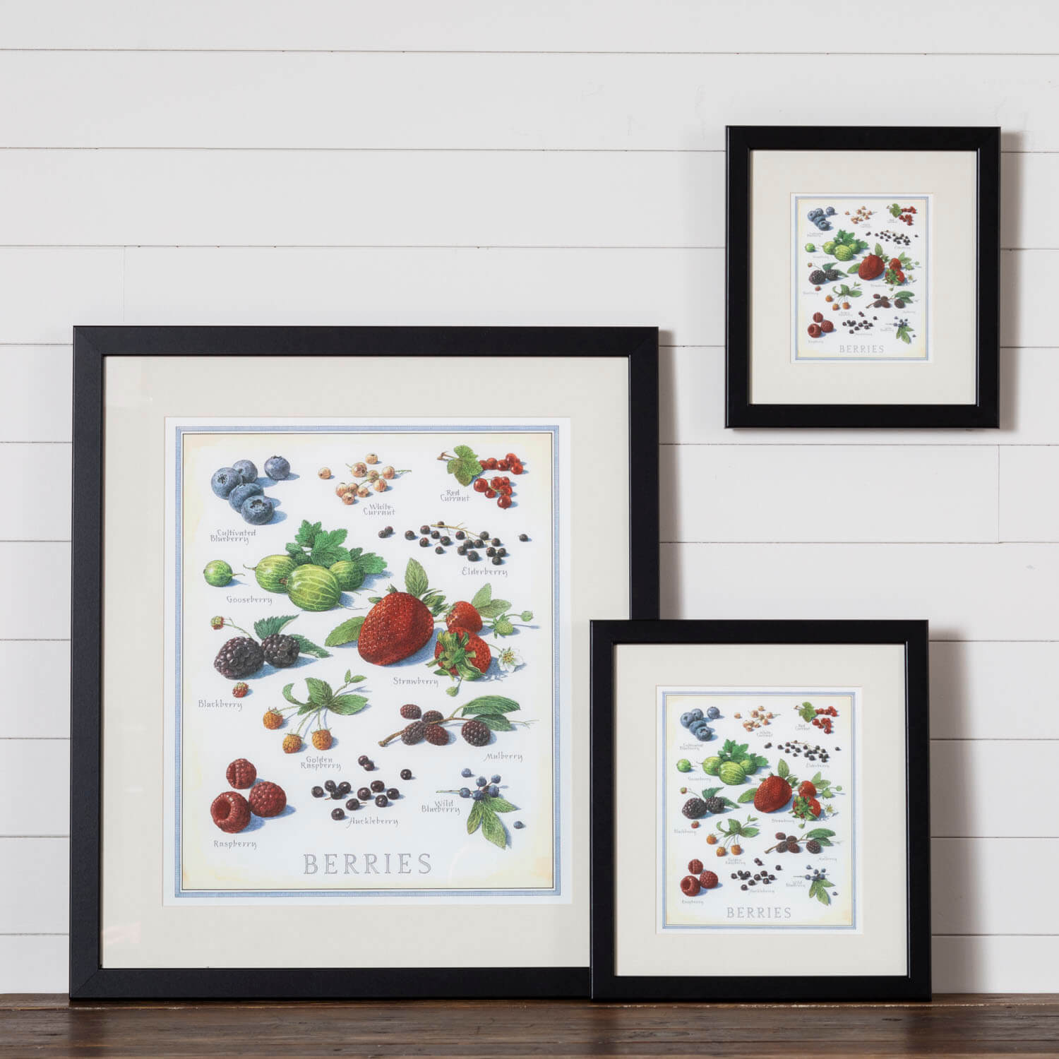Cook's Illustrated Framed Print: Berries