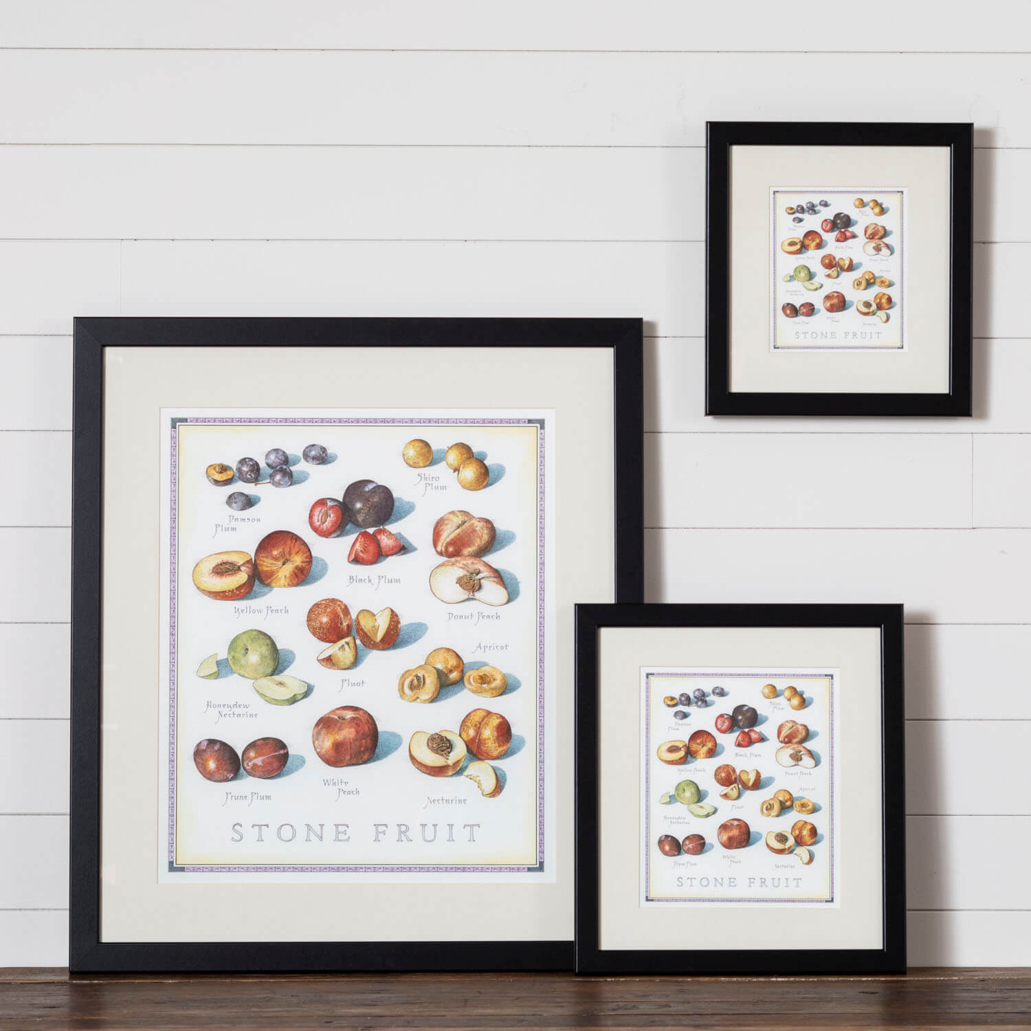 Cook's Illustrated Framed Print: Stone Fruit